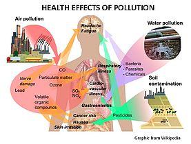 POLLUTON - WEB